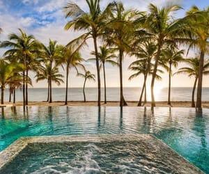 beach, palm trees, and beach house image