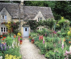 cottage, garden, and country image