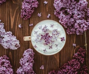 coffee, spring flowers, and cup of coffee image