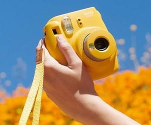 photos, yellow, and photograph image
