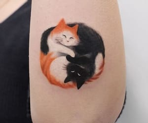 cats and love image