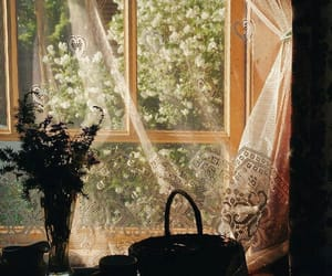 curtains, flowers, and home image