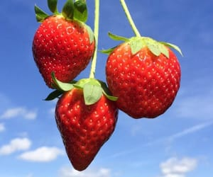 strawberry, sky, and fruit image