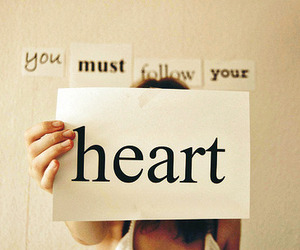 heart, follow, and text image