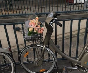 aesthetic, bicycles, and flowers image