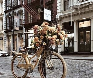 city, flowers, and new york image