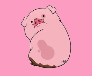 aesthetic, photography, and cute pig image