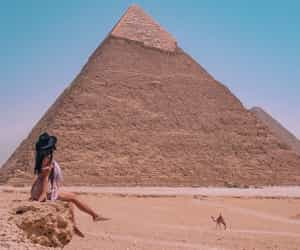 blogger, camel, and egypt image