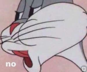 meme and no image