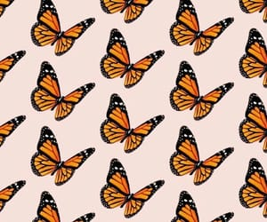 apple, background, and butterflies image