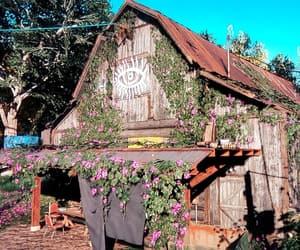 barn, eye, and vibrant image
