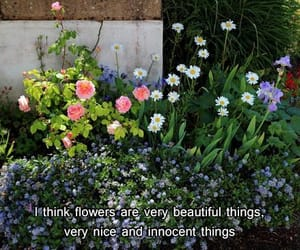 flowers, quotes, and innocent image