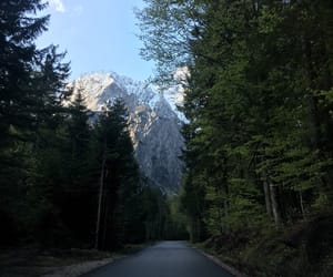 forest, spring, and mountain image