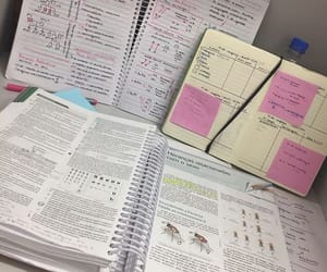 notes, school, and college image