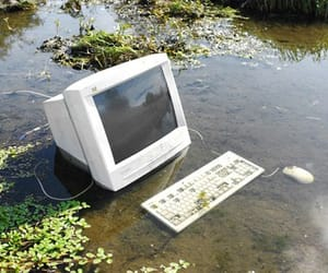 computer, aesthetic, and plants image