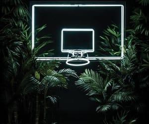 neon, green, and Basketball image