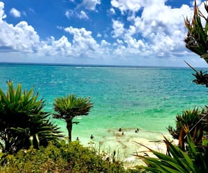 beach, green, and paradise image