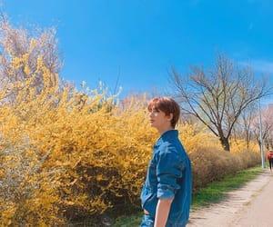 blue, nature, and hyunjin image
