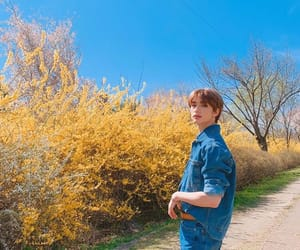 behind the scene, blue, and nature image