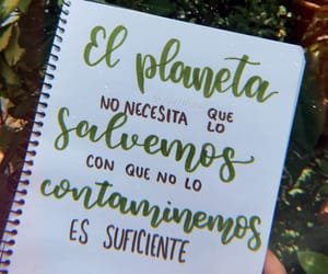 eco, frases, and hand lettering image
