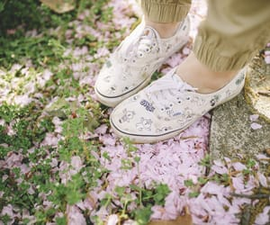 petals, shoes, and spring image