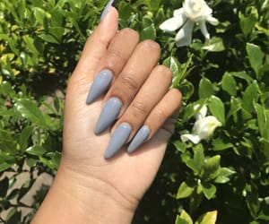almond, gray, and nails image