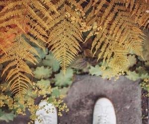 feet, photography, and screenshot image