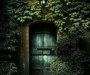 door, nature, and green image