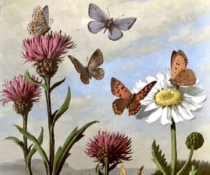 art, butterflies, and flowers image