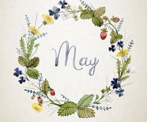 flowers, may, and watercolor image