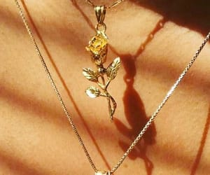 aesthetic, gold, and rose image