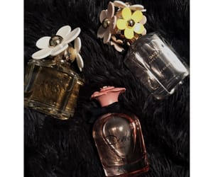 designer, perfumes, and spoiled image