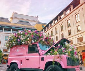 car, flores, and flower image