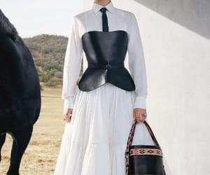 bag, Couture, and dior image