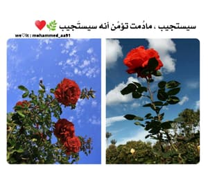 ونعم بالله, دُعَاءْ, and ًورد image