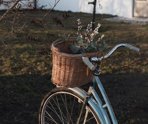 bicycle, flowers, and sky image