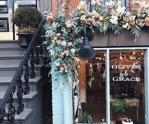 flowers, aesthetic, and travel image