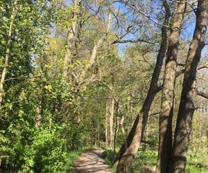 finland, helsinki, and path image