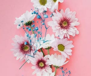 flower and flowers image