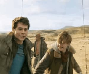 gif, newt, and dylan o'brien image