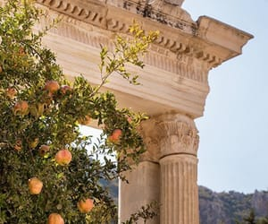 nature, peach, and Greece image