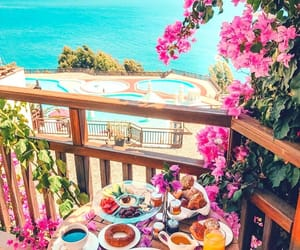 travel, flowers, and breakfast image