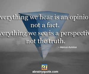 opinion, perspective, and truth image