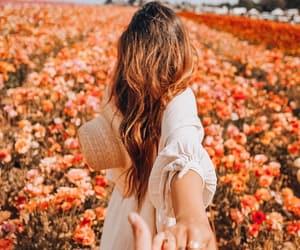 beauty, bloom, and orange image
