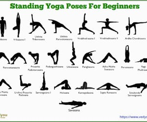yoga and yoga poses for beginners image