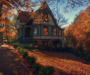 autumn, season, and fall image