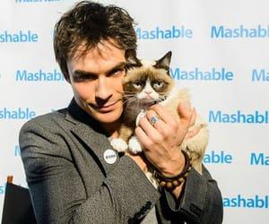 ian somerhalder, grumpy cat, and damon image