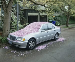 car, flowers, and grunge image