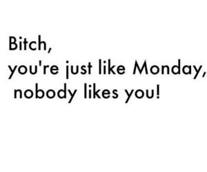 bitch, monday, and quotes image