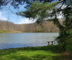 bench, lake, and sunny day image